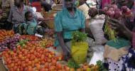 papers_FoodSecurity1