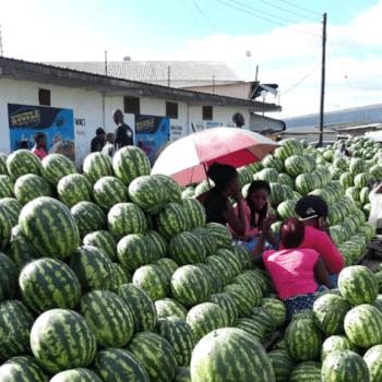 African Urban Research Initiative (AURI)