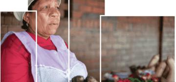City Report – Informal Economy Monitoring Study: Street Vendors in Durban