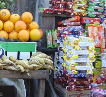 A systematic review of the literature that focuses on both the 'informal economy' and 'food security' in South Africa