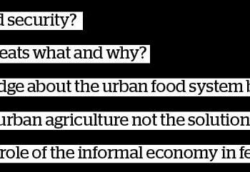 The Informal Economy's Role in Feeding Cities – a Missing Link in Policy Debates?