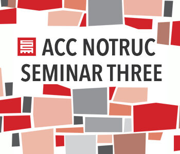 ACC NOTRUC Seminar Series: Reflection is Part of Rehabilitation: Interventions in the History of a Land Occupation