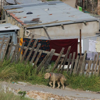 A systematised review of the health impact of urban informal settlements and implications for upgrading interventions in South Africa