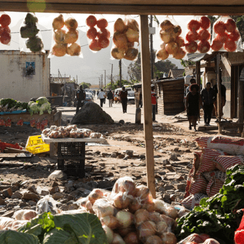 Urbal: Household food and nutrition security strategic framework