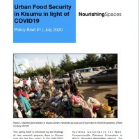 Cover image of nourishing spaces policy brief