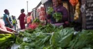 An informal vendor selling fresh produce in Masiphumelele.