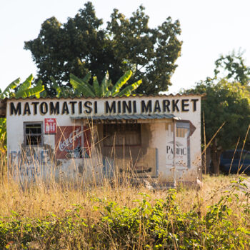 The role of the informal economy in promoting urban sustainability: Evidence from a small Zimbabwean town.